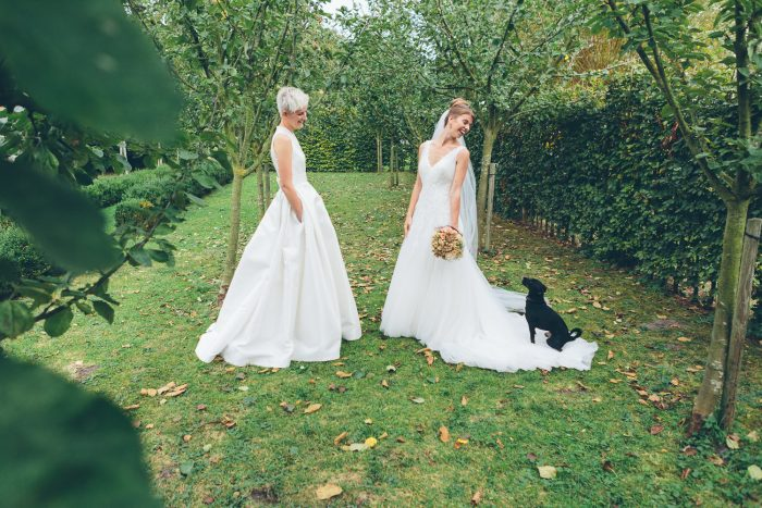 holebi huwelijk kasteel rozelaar lochristi ceremonie fotoshoot hond